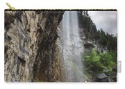Eugenia Falls Carry-all Pouch