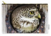 Eurasian Pygmy Owl In Profile Carry-all Pouch