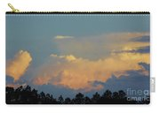 Evening Sky In Rural Florida Carry-all Pouch