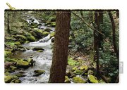 Evergreen Stream Ravine Carry-all Pouch