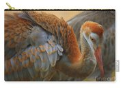 Evolving Sandhill Crane Beauty Carry-all Pouch