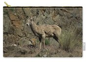 Ewe 2 Carry-all Pouch