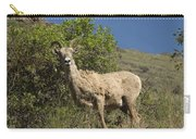Ewe 3 Carry-all Pouch