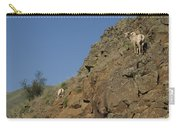 Ewe 6 Carry-all Pouch
