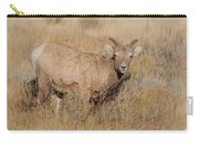 Ewe In Autumn Sun Carry-all Pouch