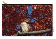 Expressive Hawk Carry-all Pouch