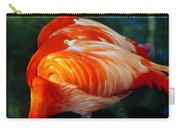 Eye Of The Flamingos Carry-all Pouch