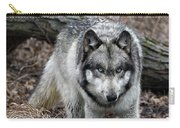 Eye On You Carry-all Pouch