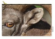 Eyes Are The Place To Start... Carry-all Pouch