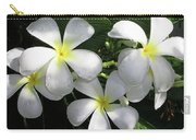 F1 Plumeria Frangipani Flowers Hawaii Carry-all Pouch