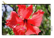 F20 Red Hibiscus Carry-all Pouch