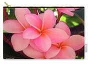 F23 Plumeria Frangipani Flowers Carry-all Pouch