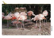 Fabulous Flamingos Carry-all Pouch
