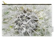 Fairy Crystals Carry-all Pouch
