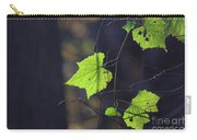 Fall Bokeh Carry-all Pouch