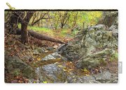 Fall Creek View Carry-all Pouch
