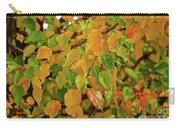Fall Foliage II Carry-all Pouch