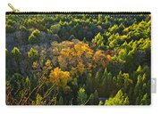 Fall Forest And Lake Top View Carry-all Pouch