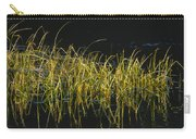 Fall Grasses - Snake River Carry-all Pouch