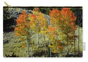 Fall In Colorado Carry-all Pouch