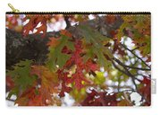 Fall In Virginia Carry-all Pouch