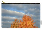 Fall Sunrise On Sugar Maple Along Route 31 Carry-all Pouch