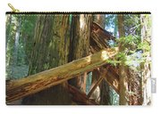 Fallen Redwood Trees Forest Carry-all Pouch