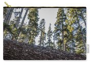 Fallen Trees Carry-all Pouch