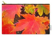 Falltime ...  Carry-all Pouch