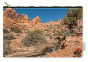 Faux Falls Trail Carry-all Pouch
