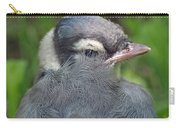Feathered Jay Carry-all Pouch