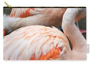 Feathers Of Flamingo Carry-all Pouch