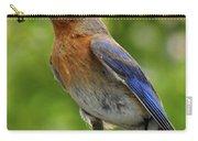 Female Bluebird Feeding Her Brood Carry-all Pouch