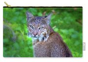 Female Bobcat Carry-all Pouch