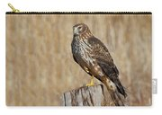 Female Northern Harrier Standing On One Leg Carry-all Pouch
