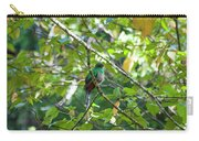 Female Quetzal Carry-all Pouch
