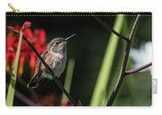 Female Rufous Hummingbird Carry-all Pouch
