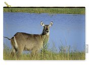 Female Waterbuck Carry-all Pouch