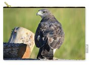 Fence Sitter Carry-all Pouch