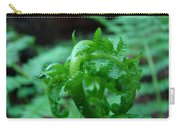 Fern Art Prints Green Forest Ferns Giclee Baslee Troutman Carry-all Pouch