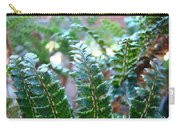 Fern Art Prints Green Sunlit Forest Ferns Giclee Baslee Troutman Carry-all Pouch
