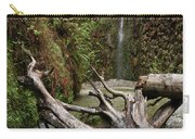 Fern Canyon Creek Carry-all Pouch