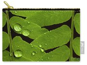 Fern Close-up With Water Droplets  Carry-all Pouch