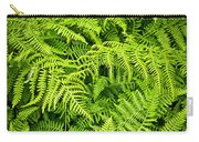 Fern Carry-all Pouch by Elena Elisseeva
