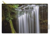 Fern Falls Carry-all Pouch