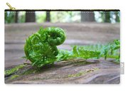 Fern On Big Redwood Tree Art Prints Baslee Troutman Carry-all Pouch
