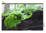 Fern On Redwood Tree Art Print Baslee Troutman Carry-all Pouch