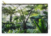 Fern Room Light Rays Carry-all Pouch