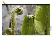 Fern Study At Blarney Castle Ireland Carry-all Pouch