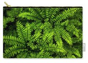 Ferns After The Rain Carry-all Pouch
